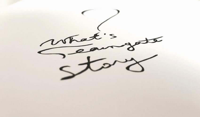 Whats Teamgate Brand Story