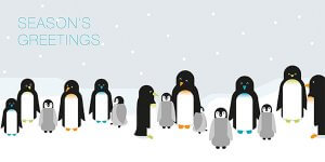 Window displays, live penguins, and CRM software